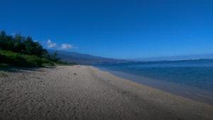 Ne restez plus seul à La Réunion … Venez nous rejoindre !